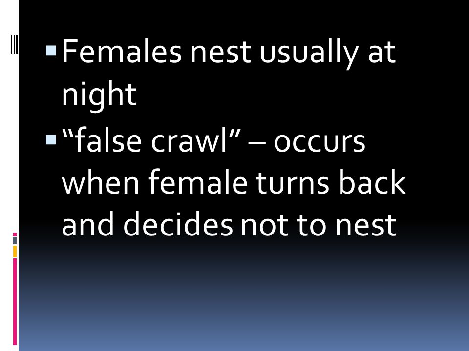 Females nest usually at night