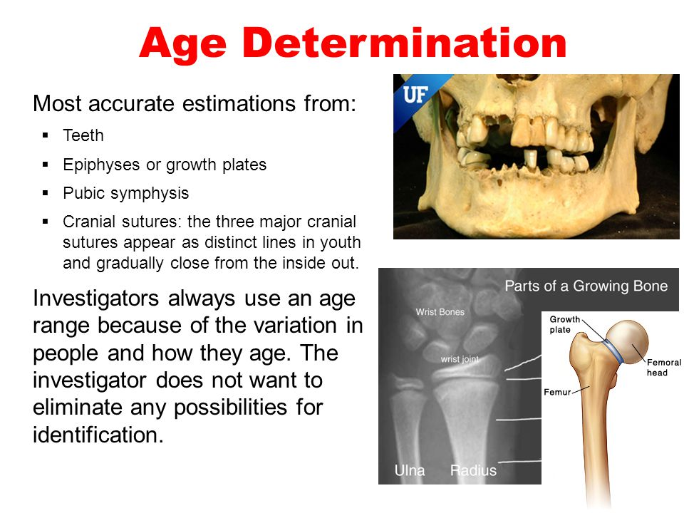 Age Determination Most accurate estimations from: