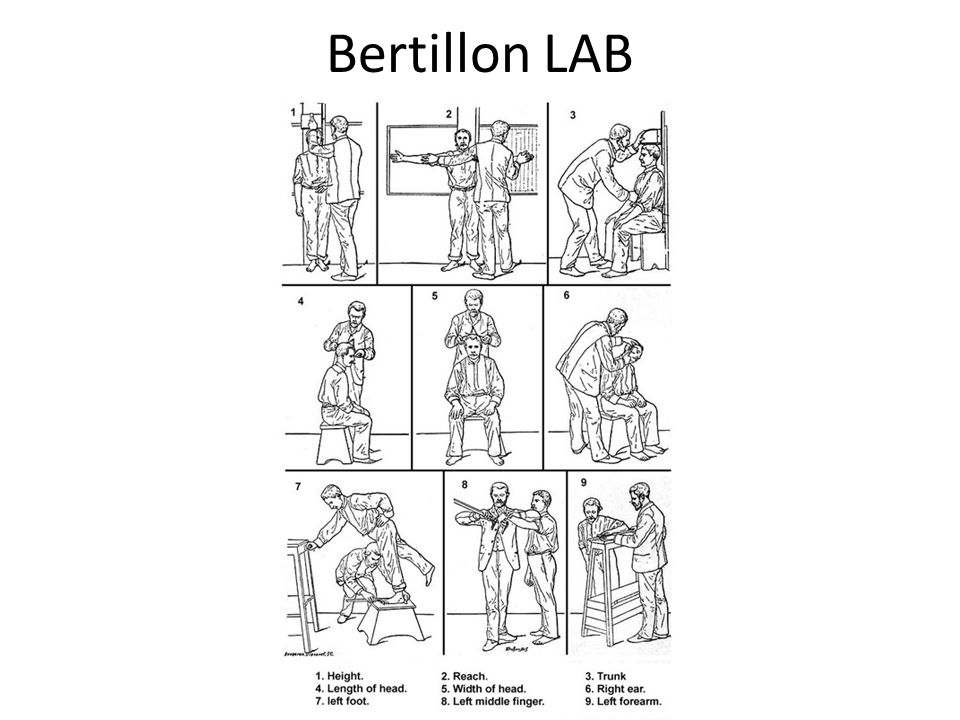 Bertillon LAB