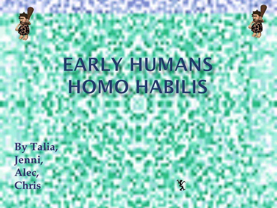 Early Humans Homo Habilis