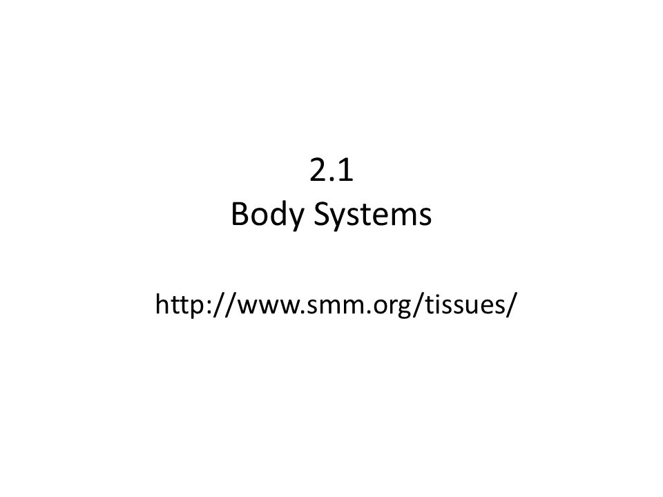 2.1 Body Systems http://www.smm.org/tissues/