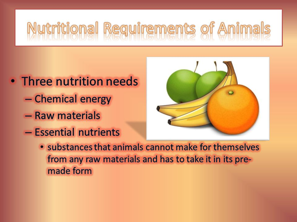 Nutritional Requirements of Animals