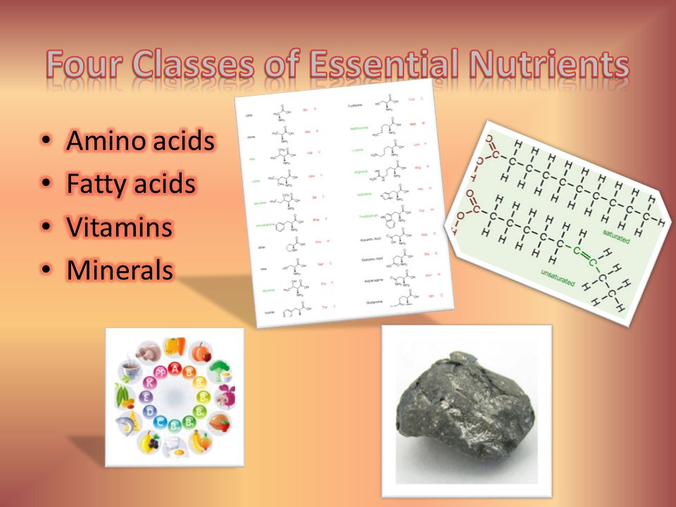 Four Classes of Essential Nutrients