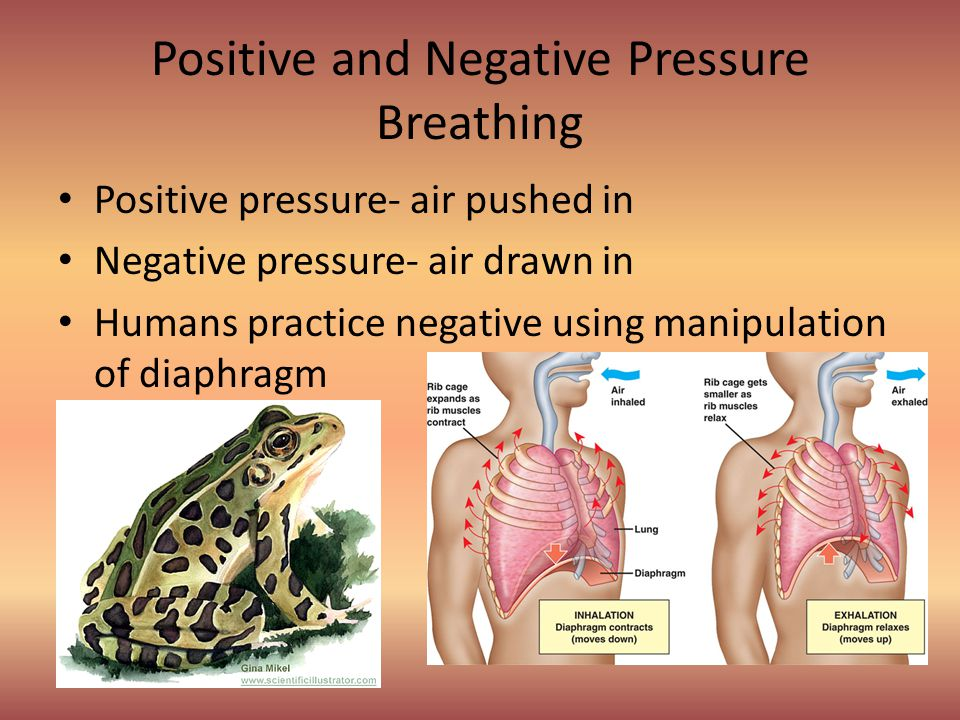 Positive and Negative Pressure Breathing