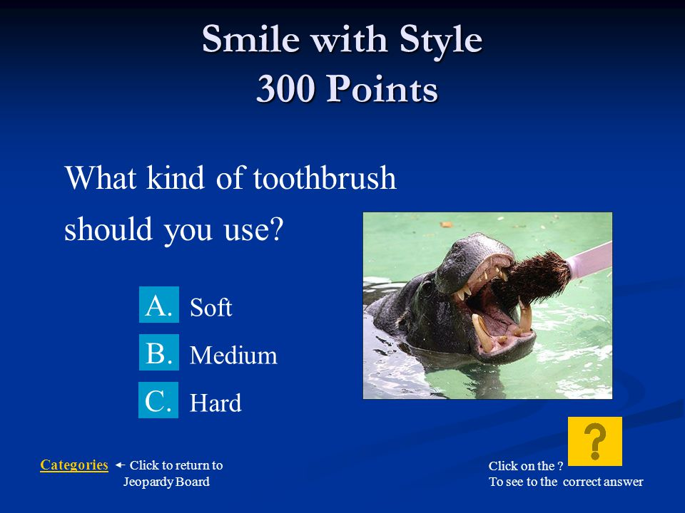 Smile with Style 300 Points