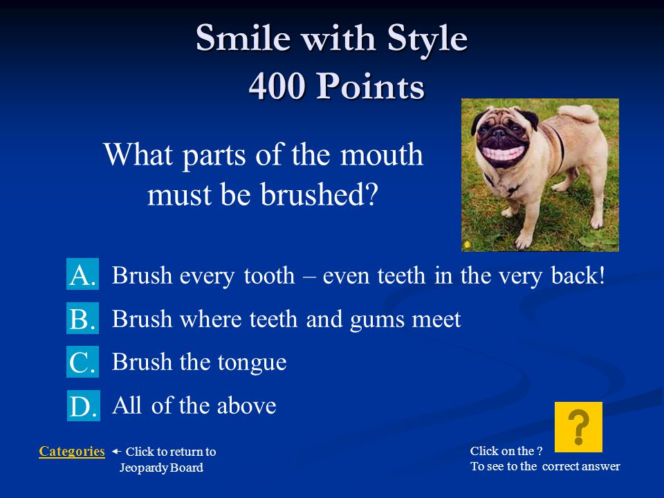 Smile with Style 400 Points