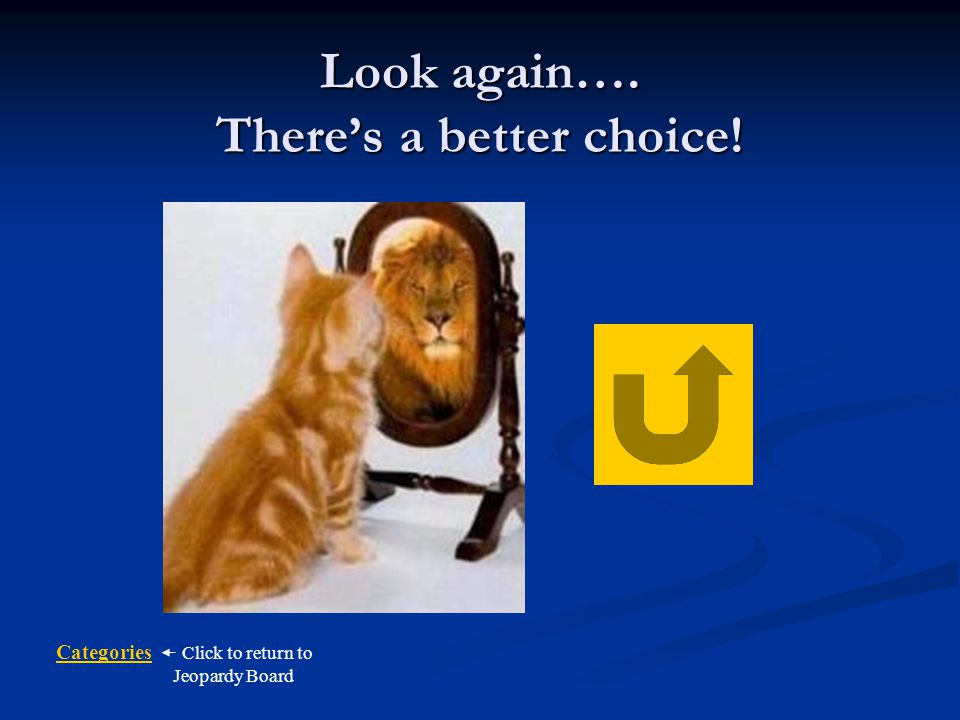 Look again…. There's a better choice!