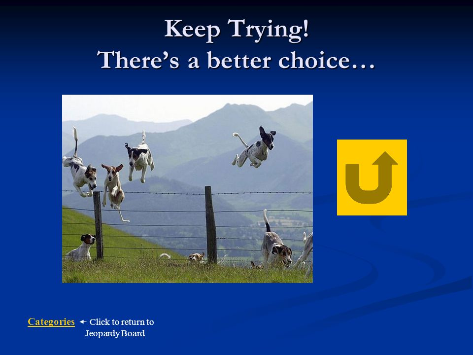 Keep Trying! There's a better choice…