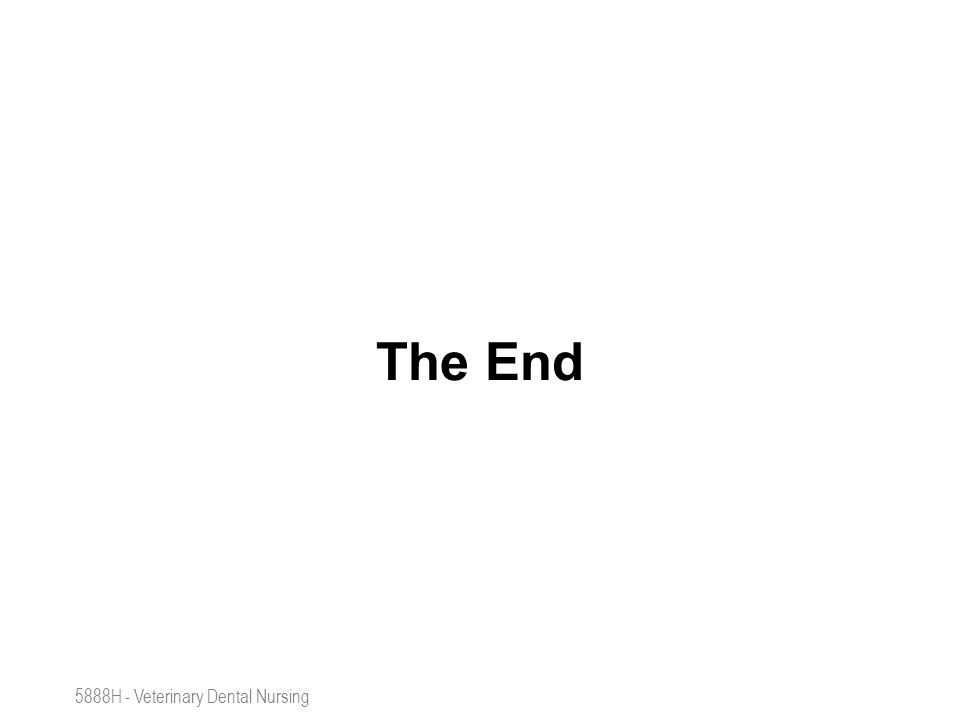 The End 5888H - Veterinary Dental Nursing