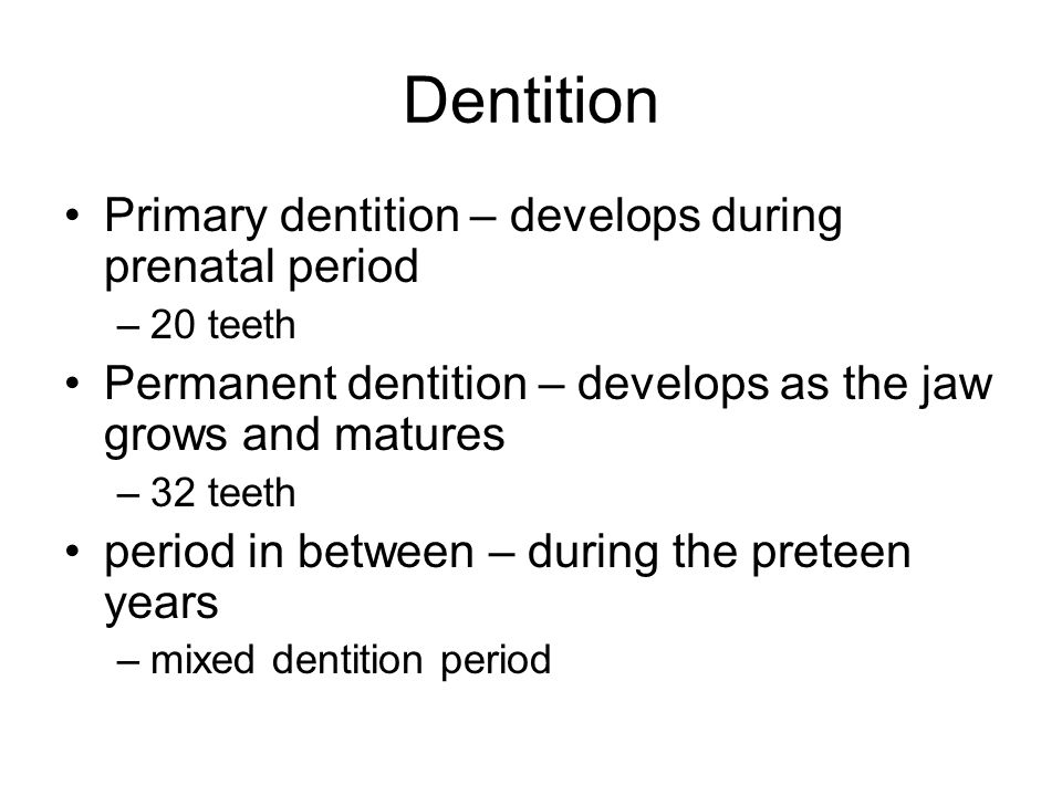 Dentition Primary dentition – develops during prenatal period