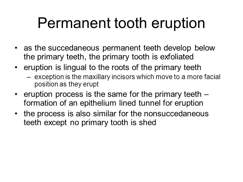 Permanent tooth eruption