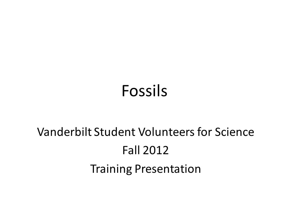 Fossils Vanderbilt Student Volunteers for Science Fall 2012