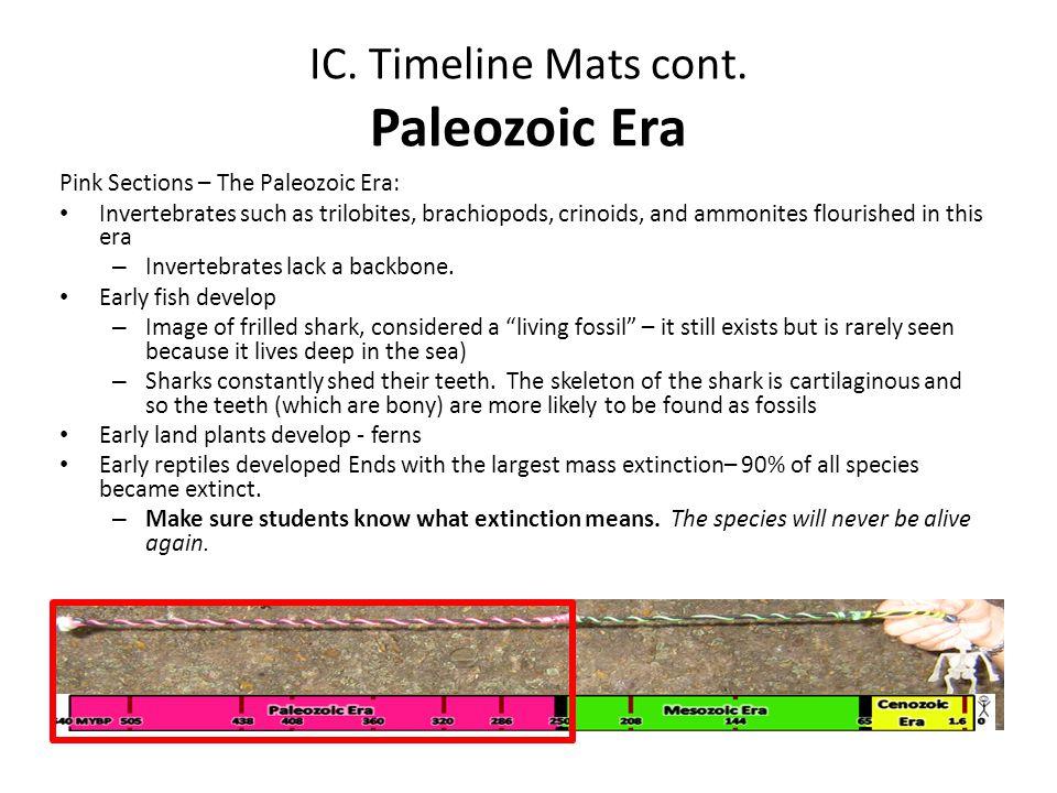 IC. Timeline Mats cont. Paleozoic Era