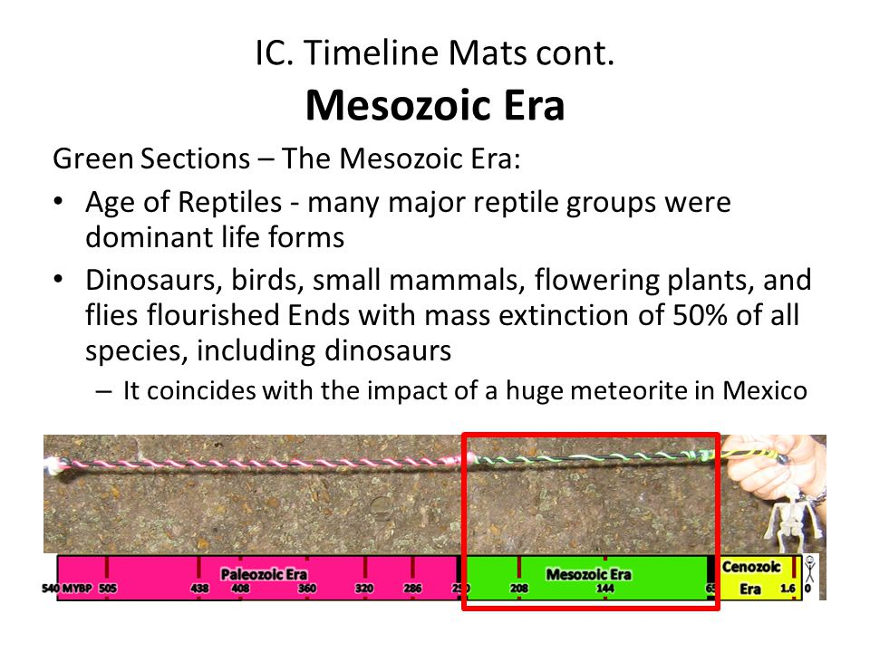 IC. Timeline Mats cont. Mesozoic Era