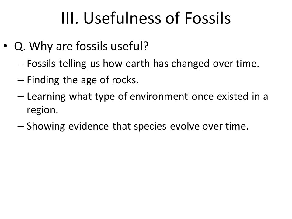 III. Usefulness of Fossils