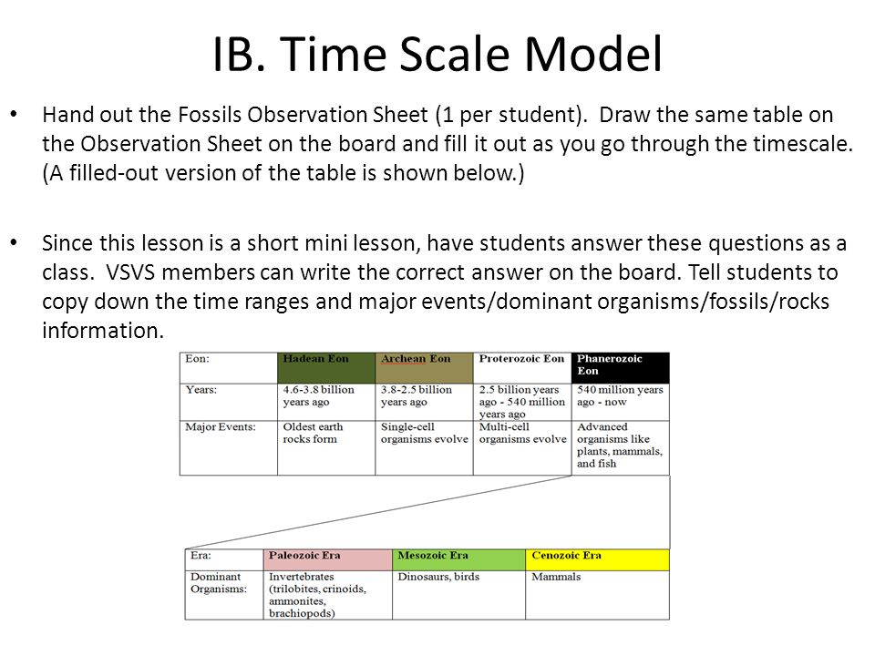 IB. Time Scale Model