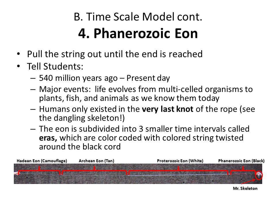 B. Time Scale Model cont. 4. Phanerozoic Eon