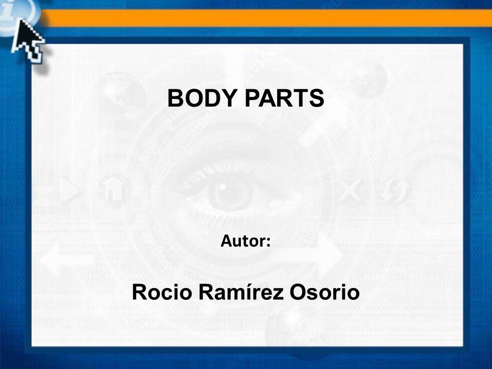 BODY PARTS Autor: Rocio Ramírez Osorio