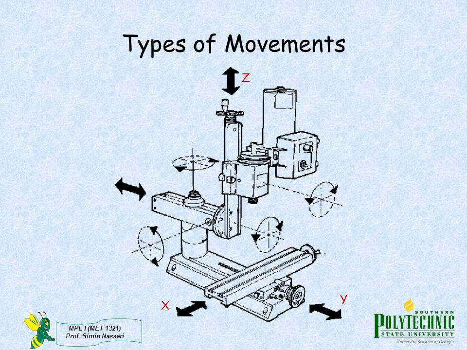 Types of Movements Z Y X