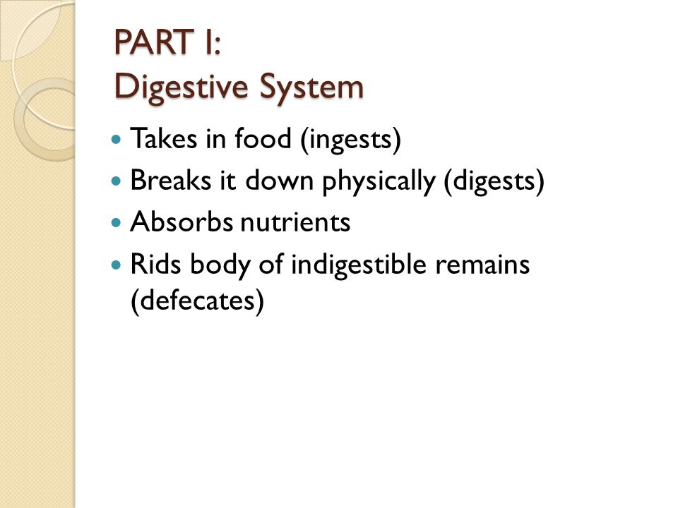 PART I: Digestive System