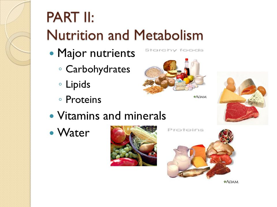 PART II: Nutrition and Metabolism