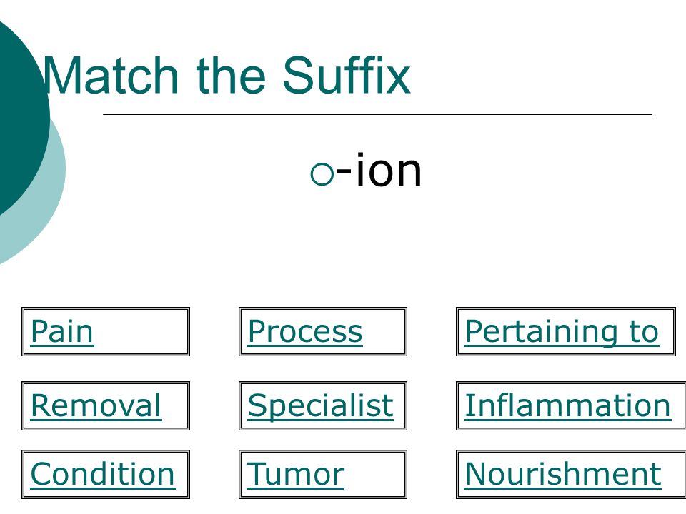 Match the Suffix -ion Pain Process Pertaining to Removal Specialist