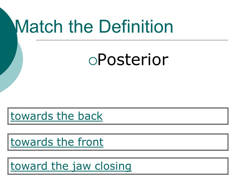 Match the Definition Posterior towards the back towards the front