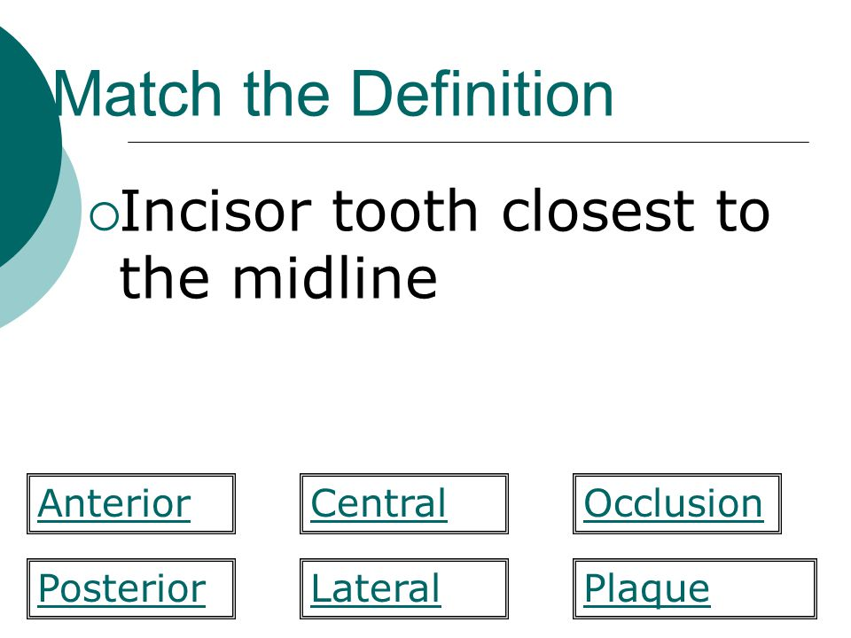 Match the Definition Incisor tooth closest to the midline Anterior