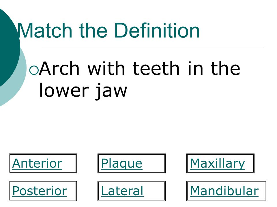 Match the Definition Arch with teeth in the lower jaw Anterior Plaque