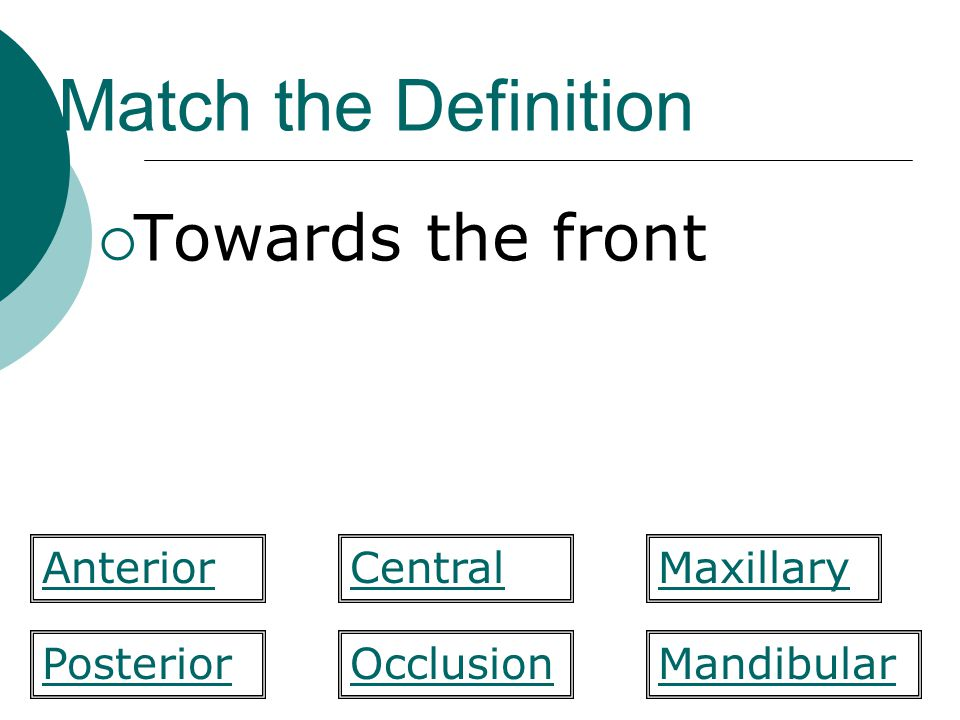 Match the Definition Towards the front Anterior Central Maxillary