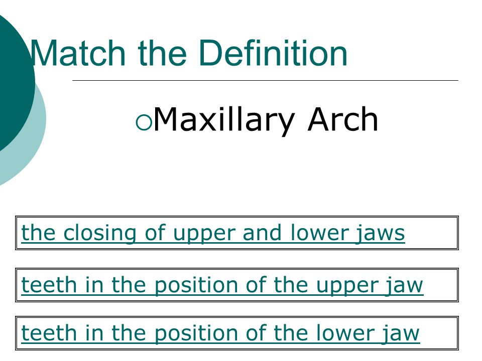 Match the Definition Maxillary Arch