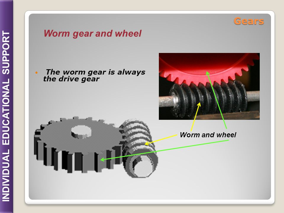 Gears Worm gear and wheel The worm gear is always the drive gear