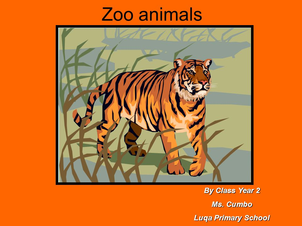 Zoo animals By Class Year 2 Ms. Cumbo Luqa Primary School