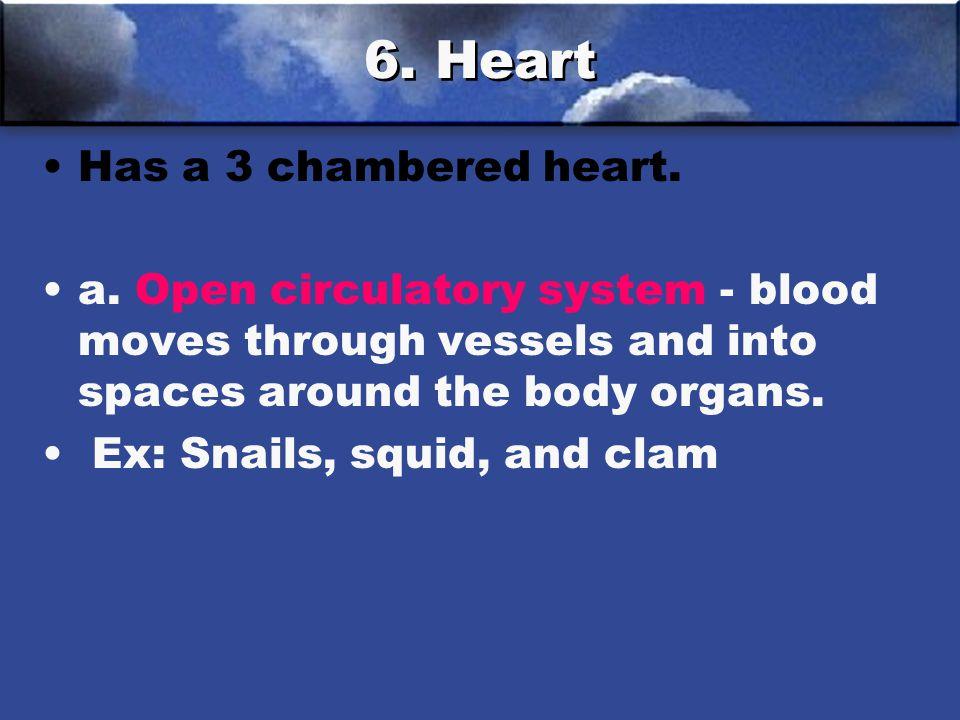 6. Heart Has a 3 chambered heart.