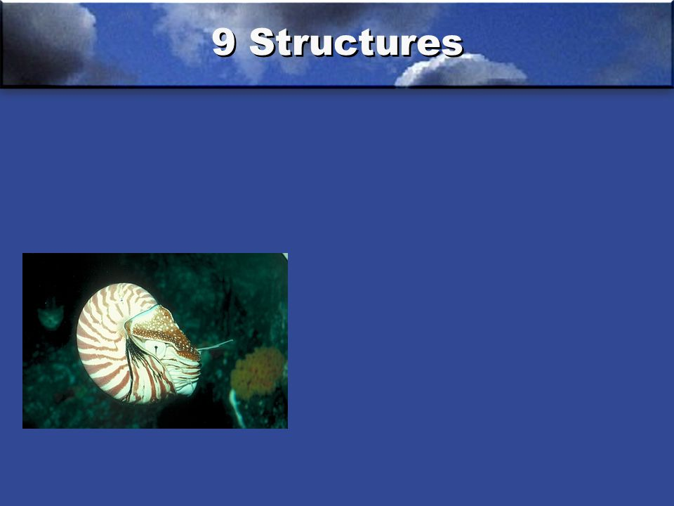 9 Structures