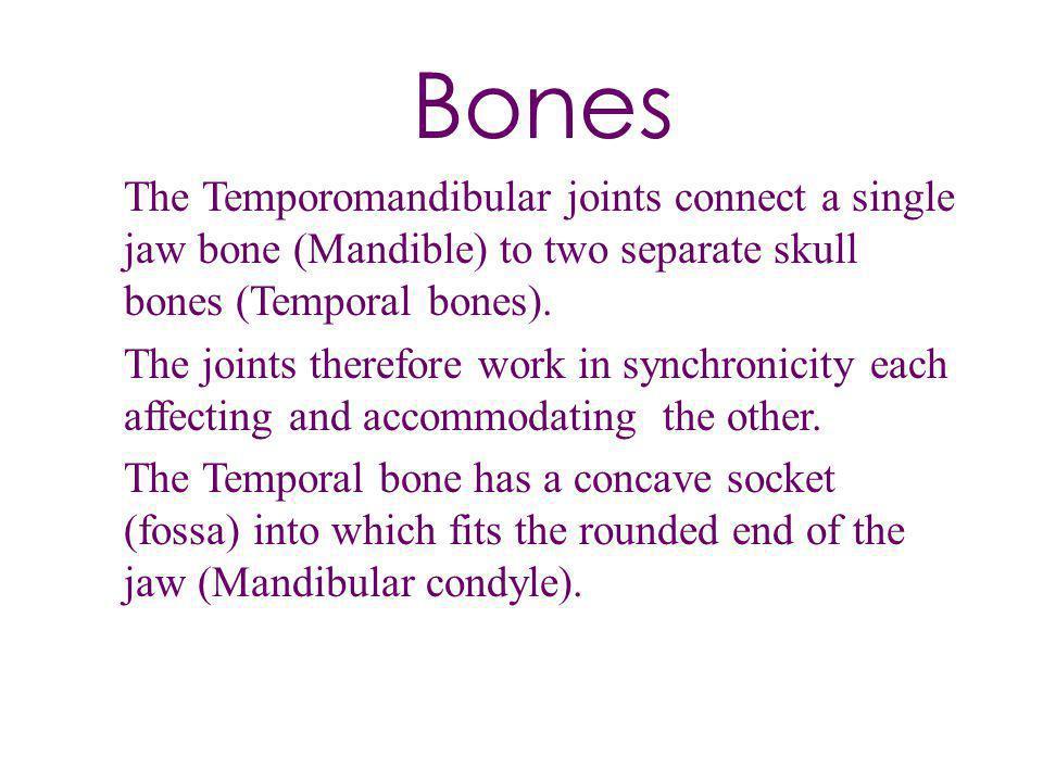 Bones The Temporomandibular joints connect a single jaw bone (Mandible) to two separate skull bones (Temporal bones).
