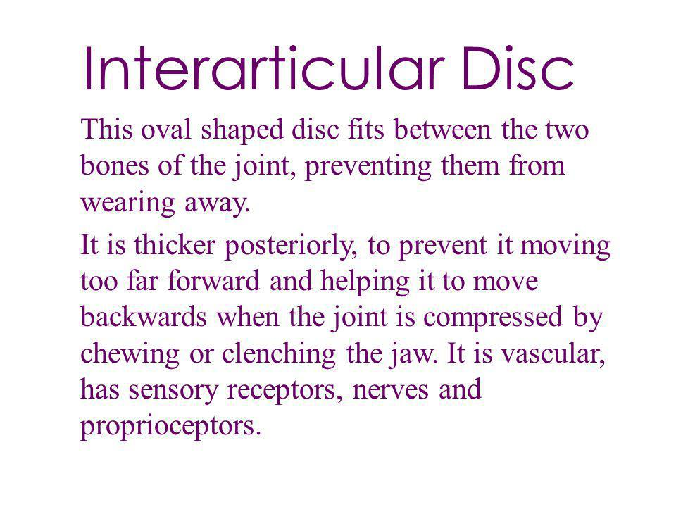 Interarticular Disc This oval shaped disc fits between the two bones of the joint, preventing them from wearing away.