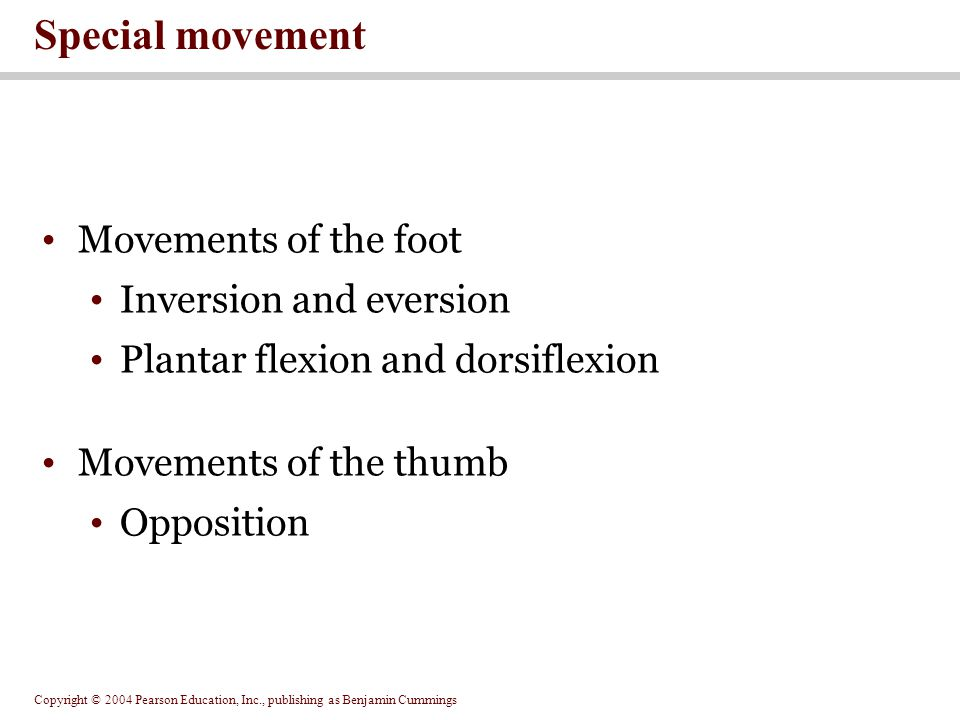 Special movement Movements of the foot Inversion and eversion