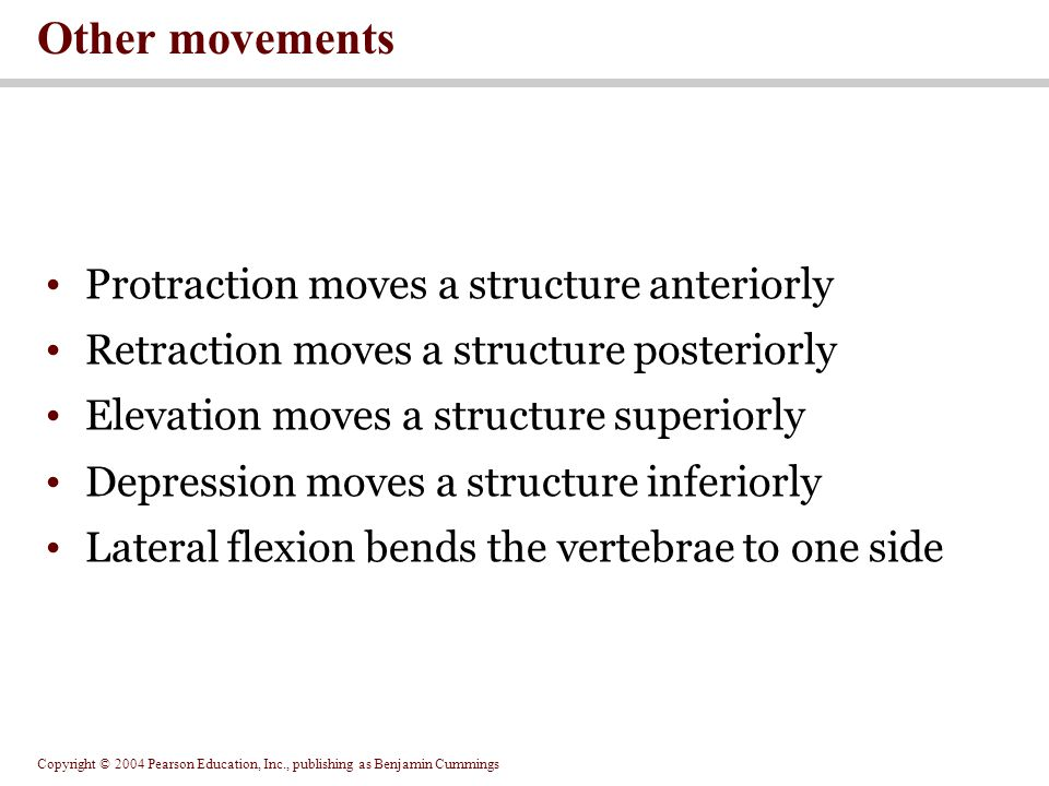 Other movements Protraction moves a structure anteriorly