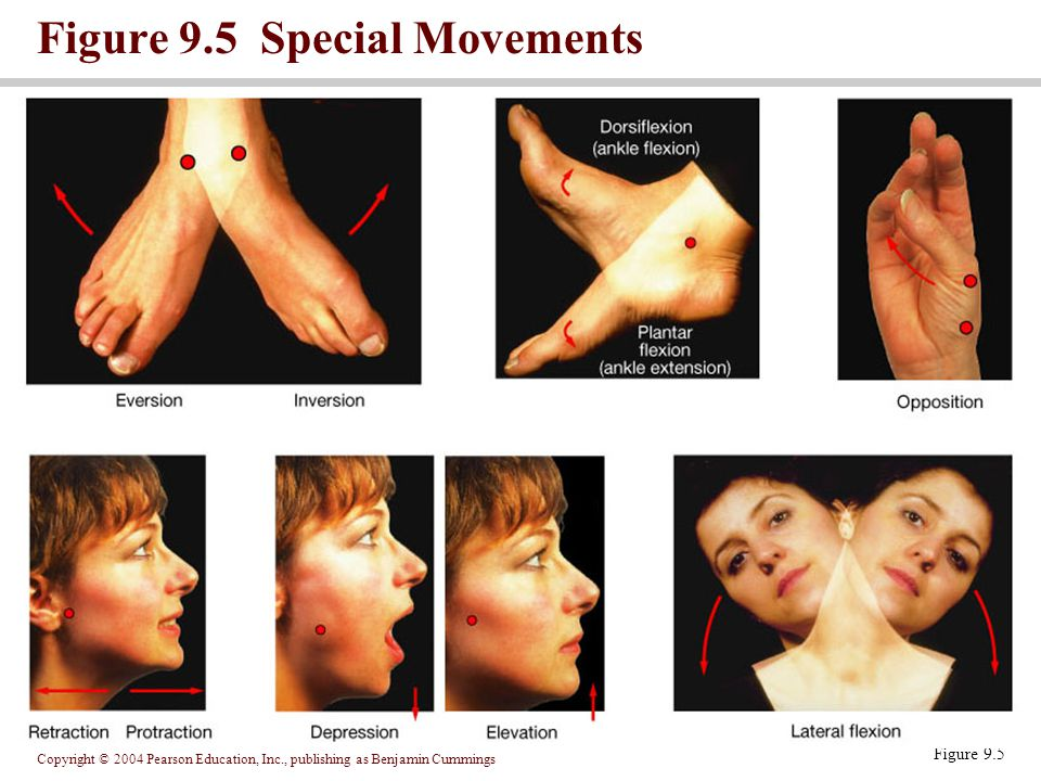 Figure 9.5 Special Movements