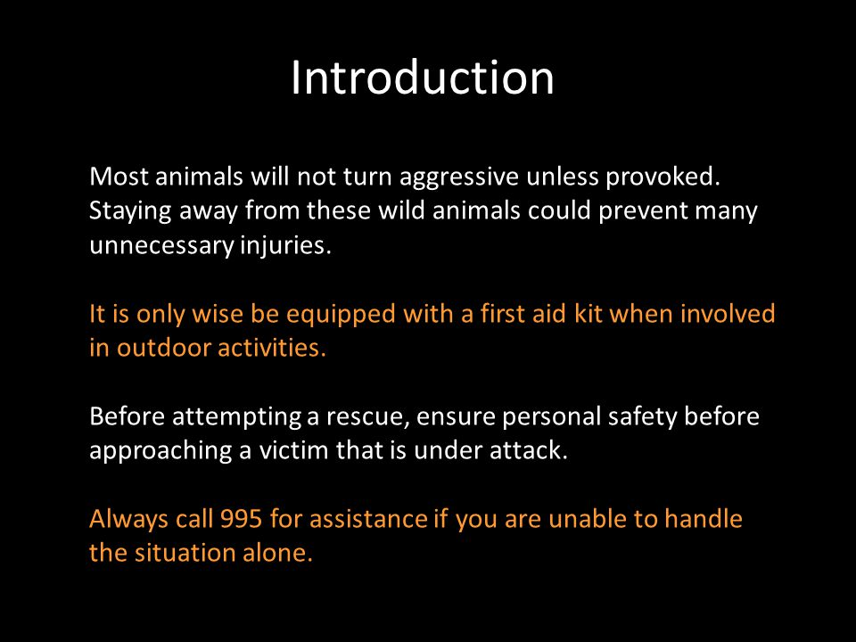 Introduction Most animals will not turn aggressive unless provoked. Staying away from these wild animals could prevent many unnecessary injuries.
