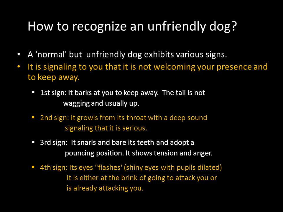 How to recognize an unfriendly dog