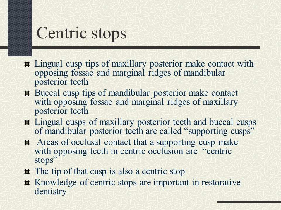 Centric stops Lingual cusp tips of maxillary posterior make contact with opposing fossae and marginal ridges of mandibular posterior teeth.