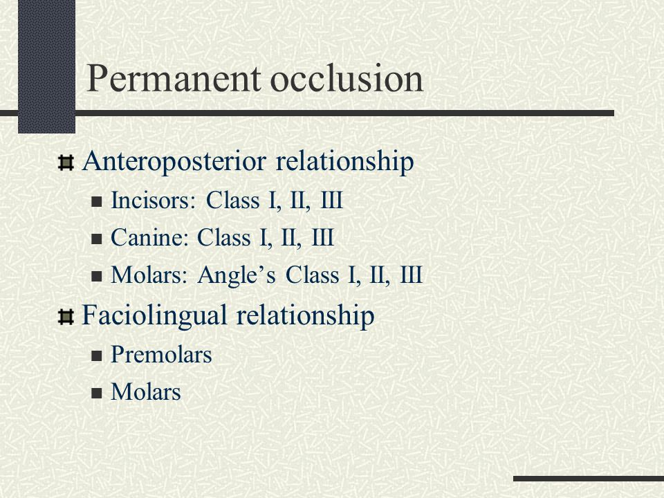 Permanent occlusion Anteroposterior relationship