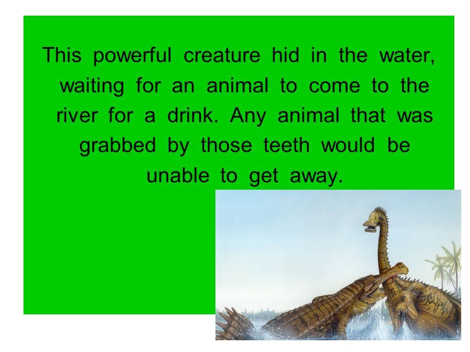 This powerful creature hid in the water,