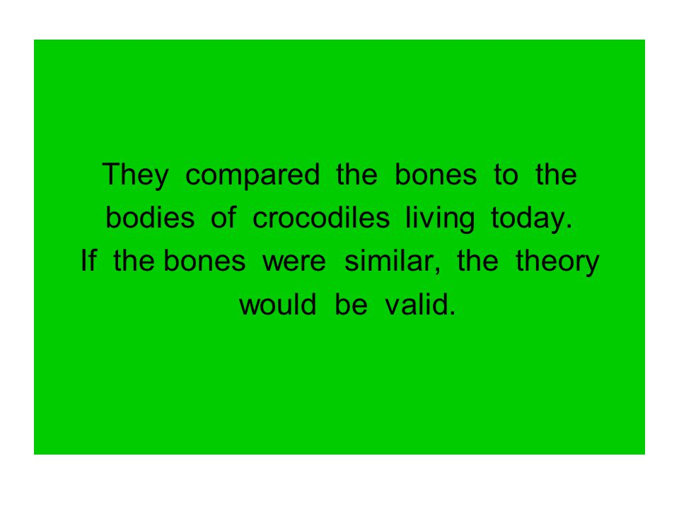They compared the bones to the bodies of crocodiles living today.