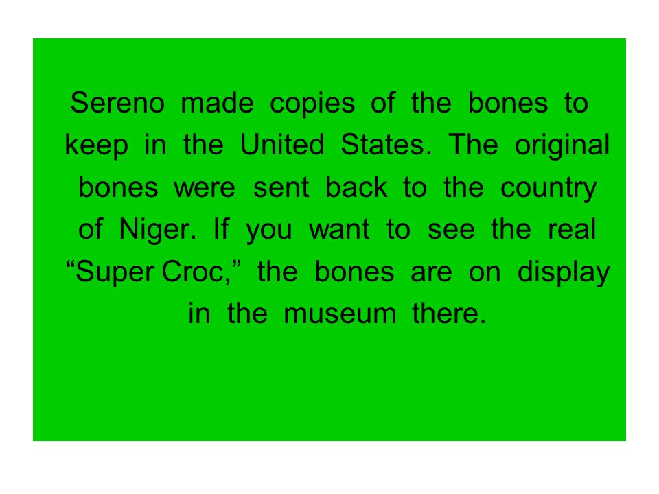 Sereno made copies of the bones to