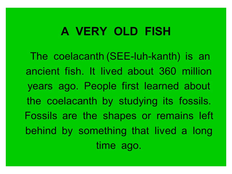A VERY OLD FISH The coelacanth (SEE-luh-kanth) is an