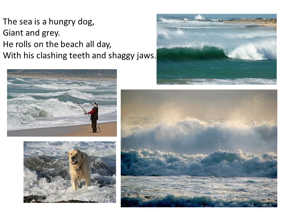 The sea is a hungry dog, Giant and grey.