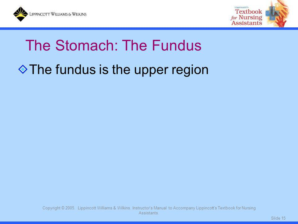 The Stomach: The Fundus